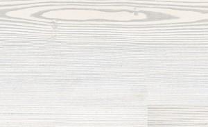 Alerce blanco níveo - 1 lama