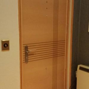 Forrado puerta entrada ranurada